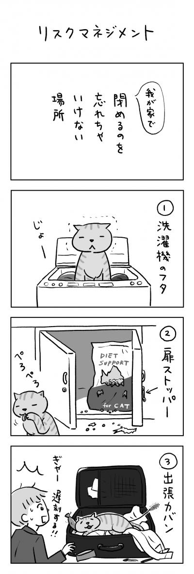019_2