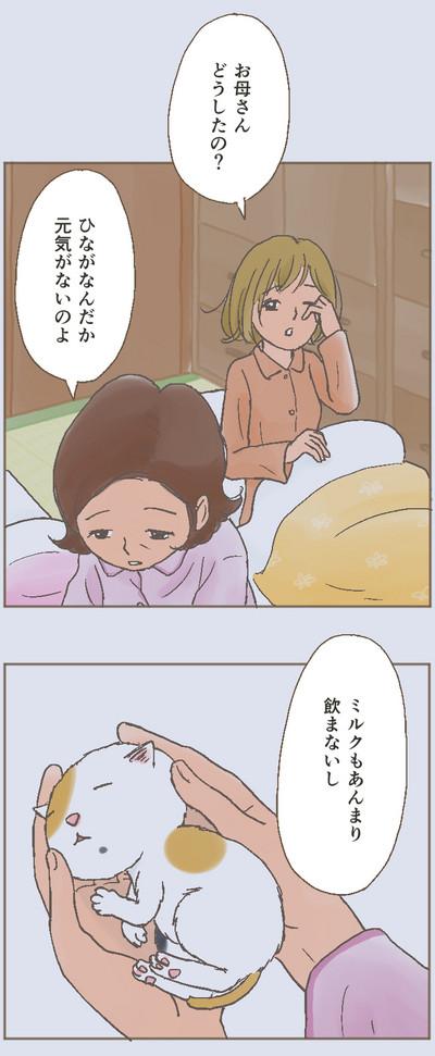 Hinagiku_0008_03