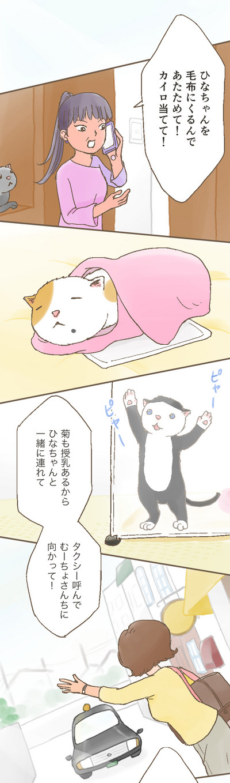 Hinagiku_0009_01