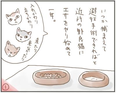 Nora01_2