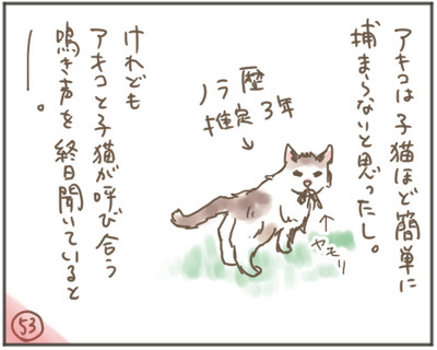 Nora53_2