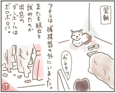 Nora71_2
