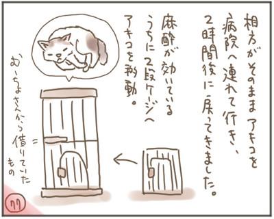 Nora77_2
