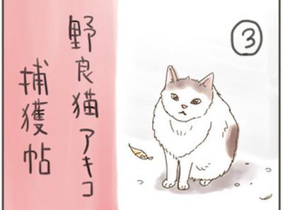 Akiko3